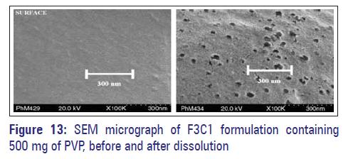 Basic-clinical-pharmacy-SEM-micrograph-F3C1-formulation
